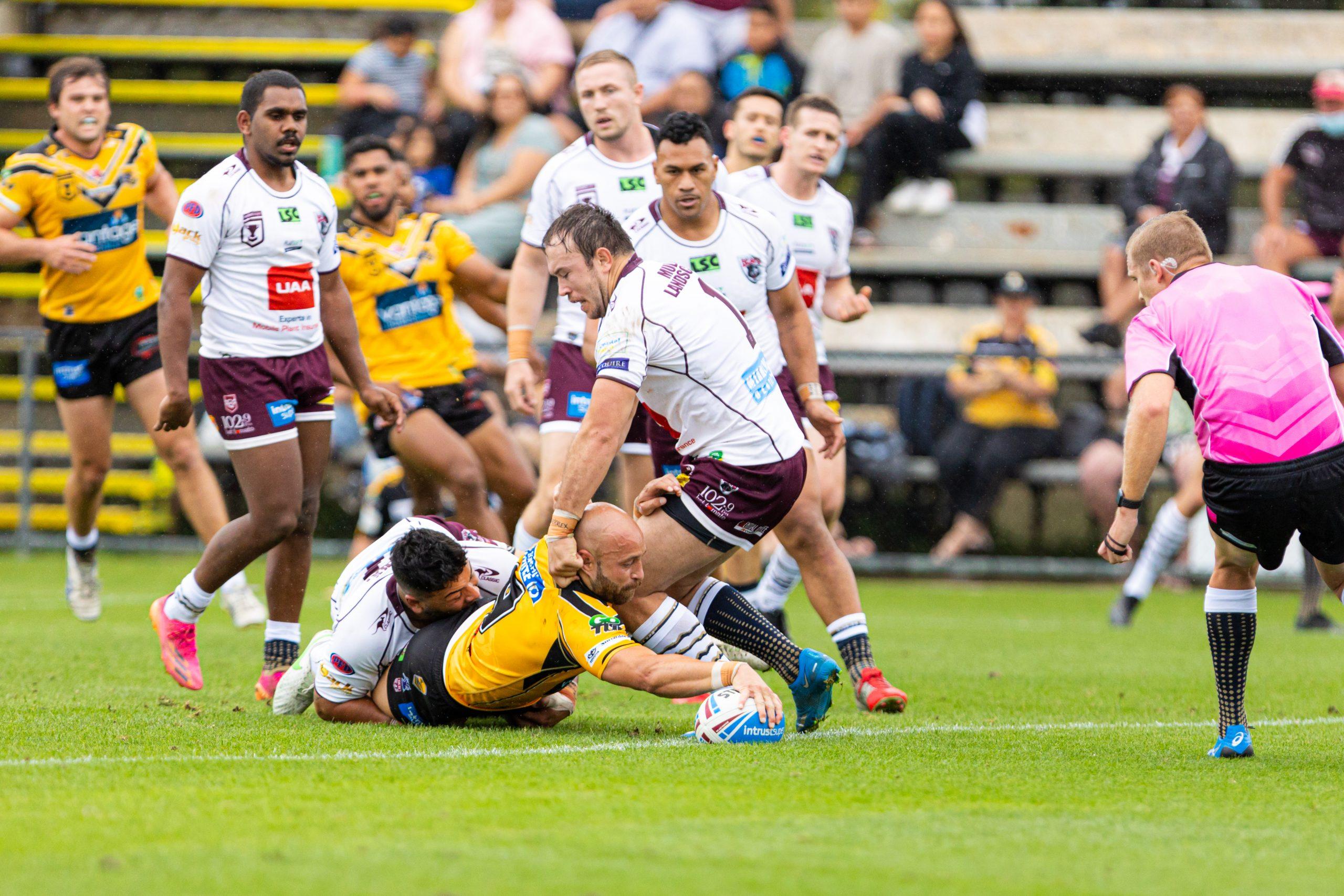 Sunshine Coast put on classy display against Bears
